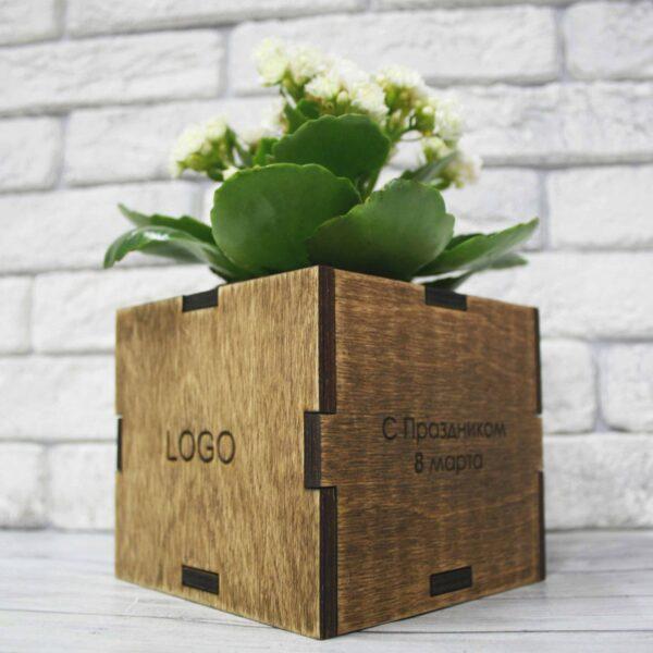 Эко-куб Вырасти цветок